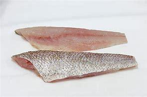 Sweet Lip Snapper 200-300g, 5kg