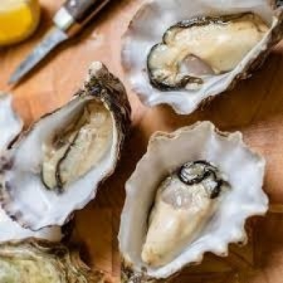Oyster 1/2 Shell Premium 10Dozen - Click for more info